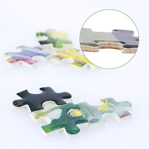 ACCYT HD Una Antigua Granja y Molino de Viento en la Pradera en Dakota del Norte 9016365 (19x27 Premium 1000 Piece Jigsaw Puzzle Made in USA!)