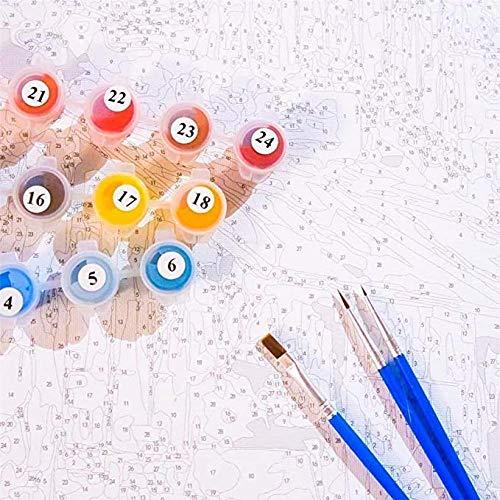 Pintura de Bricolaje por números galopar galopar para niños Adultos Pintar por números Buen Regalo para Bodas de cumpleaños o alojamiento Nuevo