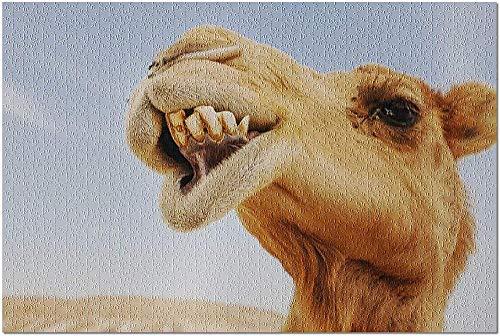 ACCYT HD Funny Close Up of Camel in Desert 9008561 (¡Rompecabezas Premium de 500 Piezas de 52*38cm Hecho en EE. UU.!)