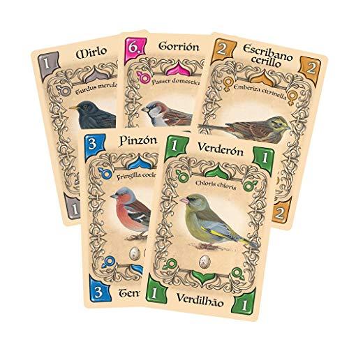 Asmodée- Pájaros cantores - Juego de Cartas, Color (LKGLS01ES)