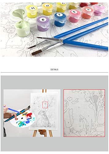 Bailarina de Poder Figura DIY Pintura Digital Lienzo de Arte decoración del hogar 40X50 cm sin Marco