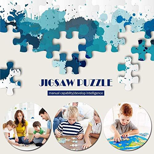 CELLYONE Rompecabezas para Adultos 1000 Piezas Puesta de Sol sobre el mar en Calma Juegos educativos, Rompecabezas para niños