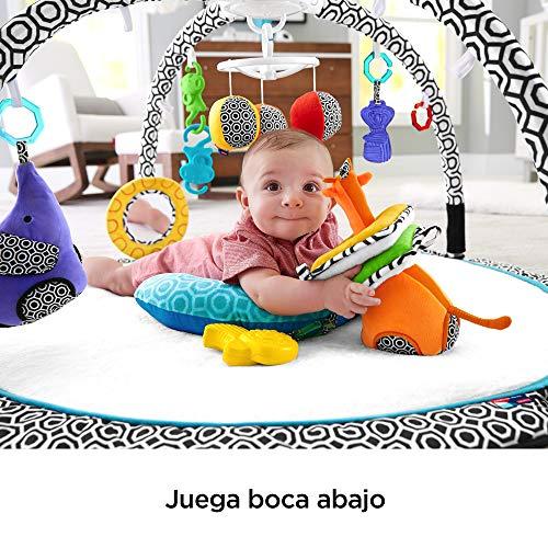 Fisher-Price - Gimnasio Estimula Los Sentidos, Manta de Juego para Bebé (Mattel DFP71)