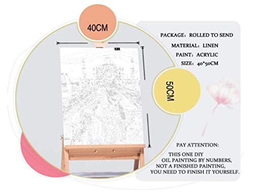 HAON Pintura por números DIY Pintura al óleo Digital Mr. Wolf Kit de Pintura para niños Adultos Decoración Hecha a Mano Artesanías Artes 16X20 Inch Sin Marco