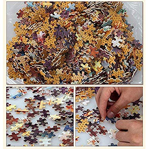 Jigsaw Detective Conan Puzzles Anime Jimmy Kudo Rachel Moore 300/500/1000/1500 Piezas (Personalizable)(Size:500 Piezas)