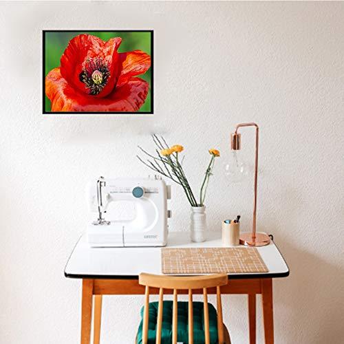La pintura de DIY por los kits de diamante para adultos, niños, Ministerio del Interior de decoración de interior. Presenta regalo para ella él Flower 15.7x11.8in 1 Pack By Injoyser