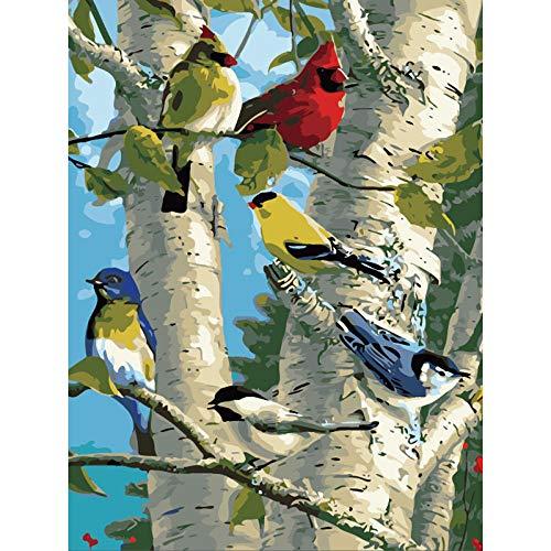 Paint by Number Kit de Pintura al Óleo de Lona para Adultos y Niños y Pincel para Decoraciones de Hogar de Arte Regalos -Pájaro Cantor en Abedul 40x50cm [Sin marco]