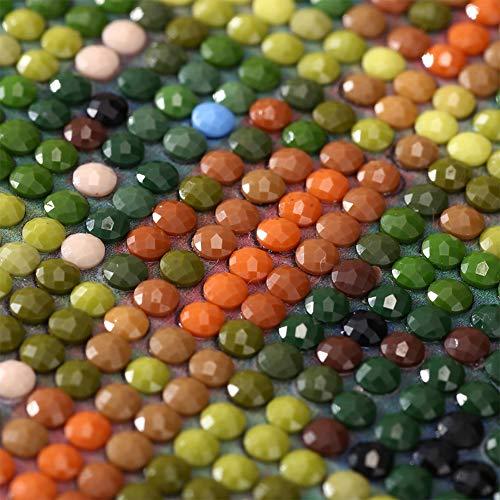 Punto De Cruz Diamante Kit Completo Cristales Mosaicos Diy Gato Azul Ruso De Cerca Animales Taladro Redondo Fotos Arts Craft Regalo Incluido Para La Decoración De La Pared Del Hogar Sin Marco 40X50Cm