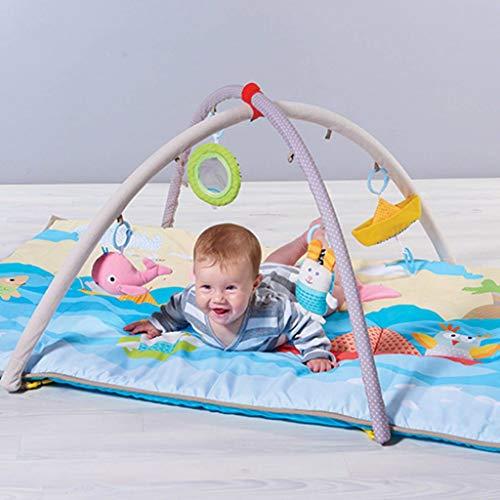 Taf Toys - Gimnasio para bebé (palas de playa)