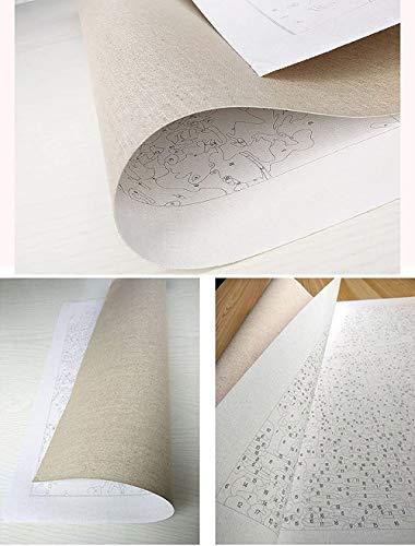TWEN-520 Renacimiento, Pintura al óleo DIY sobre Lienzo, Kit de Pintura acrílica Pintada a Mano (por número) 40x50cm Pintada a Mano por Pintura de números, decoración del hogar