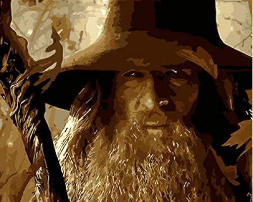 Ysain Kit De Pintura por Número Mago De La Noche DIY Pintura Al Óleo Kit con Pincel Y Pintura Acrílica Decoración del Hogar De Lona Pintura Digital para Adultos-40*50Cm(Sin Marco)