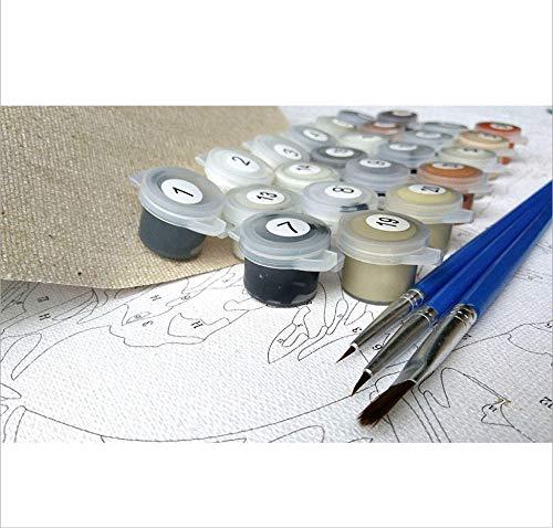 Zhxx Pintar Por Numeros Adultos Mar Gaviota Ave Calma Paisaje Diy Arte De La Pared Lienzo Pintura Regalo Decoración Para El Hogar 40X50Cm Con Marco