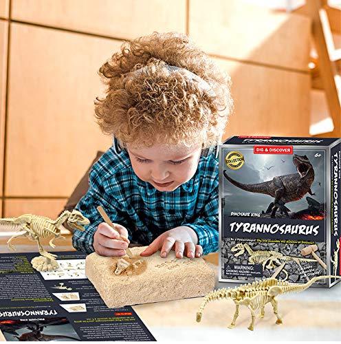 DSYYF Dinosaur Fossil Digging Kit, 3D Dinosaur Fossils DIY Dinosaur Skeleton Puzzles Model Set para niños Dinosaur Toys Birthday Party,B