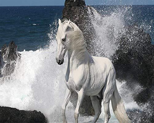 jwiaw DIY Kits De Pinceles De Pintura Al Óleo Pintura por Números para Adultos, White Horse On TH Niños Mayores Junior Principiante Acrílicos Kits De Pintura Al Óleo 40X50Cm