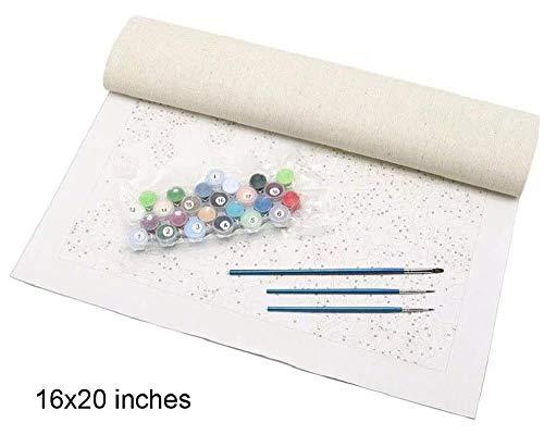 wangsheng Pintura por números Pintar Digital Kit de Pintura al óleo DIY Kits Lienzo Digital para (40X50cm) sin Bordes--Arte de niña Kung fu